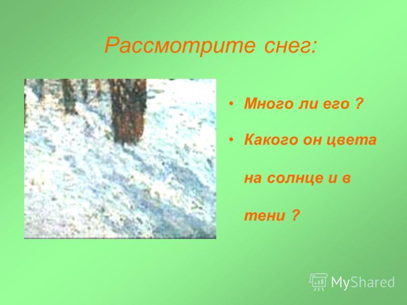 Рассмотрите снег: Много ли его ? Какого он цвета на солнце и в тени ?