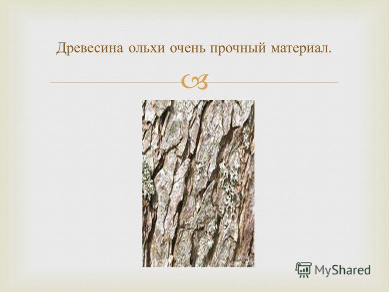 Древесина ольхи очень прочный материал.