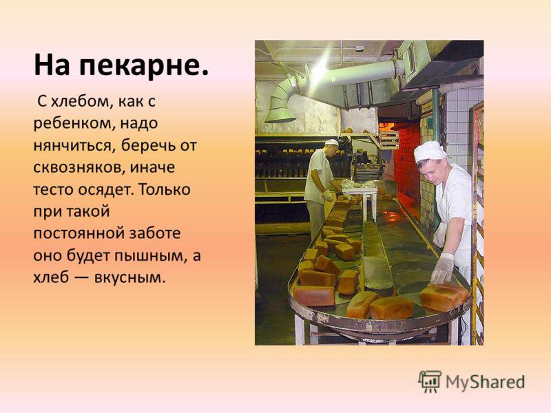 На пекарне. С хлебом, как с ребенком, надо нянчиться, беречь от сквозняков, иначе тесто осядет. Только при такой постоянной заботе оно будет пышным, а хлеб вкусным.