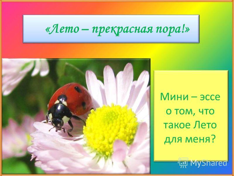 «Лето – прекрасная пора!» Мини – эссе о том, что такое Лето для меня?