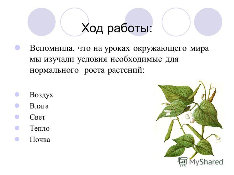 Ход работы: Вспомнила, что на уроках окружающего мира мы изучали условия необходимые для нормального роста растений: Воздух Влага Свет Тепло Почва