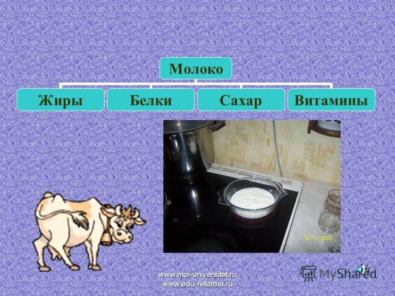 Молоко ЖирыБелкиСахарВитамины