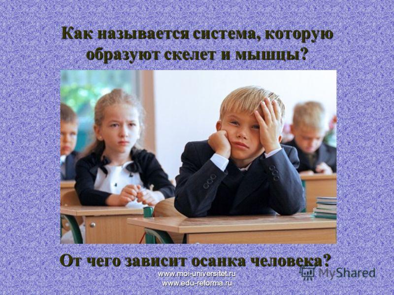 www.moi-universitet.ru www.edu-reforma.ru Как называется система, которую образуют скелет и мышцы? От чего зависит осанка человека?