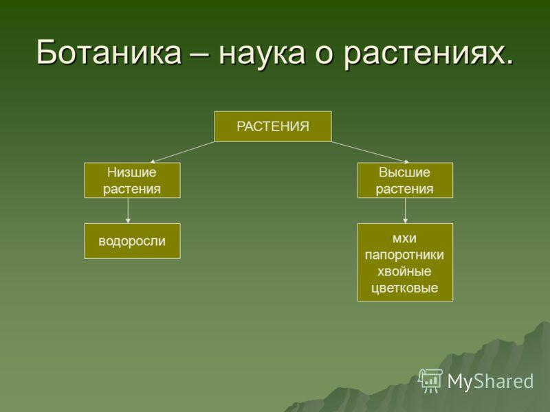 Наука БИОЛОГИЯ.