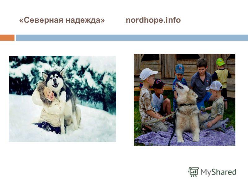 «Северная надежда» nordhope.info