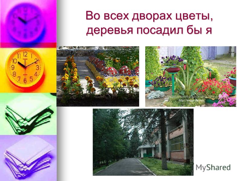 Во всех дворах цветы, деревья посадил бы я