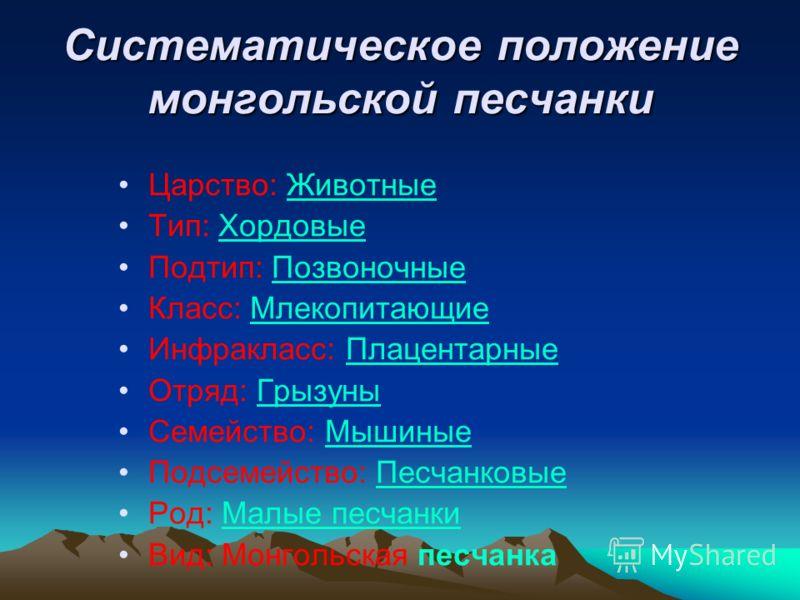 Систематическое положение монгольской песчанки Царство: ЖивотныеЖивотные Тип: ХордовыеХордовые Подтип: ПозвоночныеПозвоночные Класс: МлекопитающиеМлекопитающие Инфракласс: ПлацентарныеПлацентарные Отряд: ГрызуныГрызуны Семейство: МышиныеМышиные Подсе