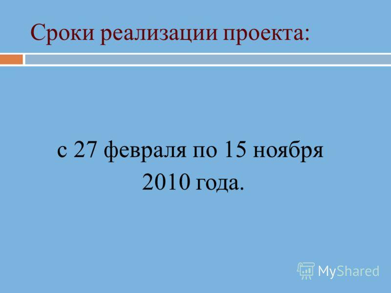 Сроки реализации проекта: с 27 февраля по 15 ноября 2010 года.