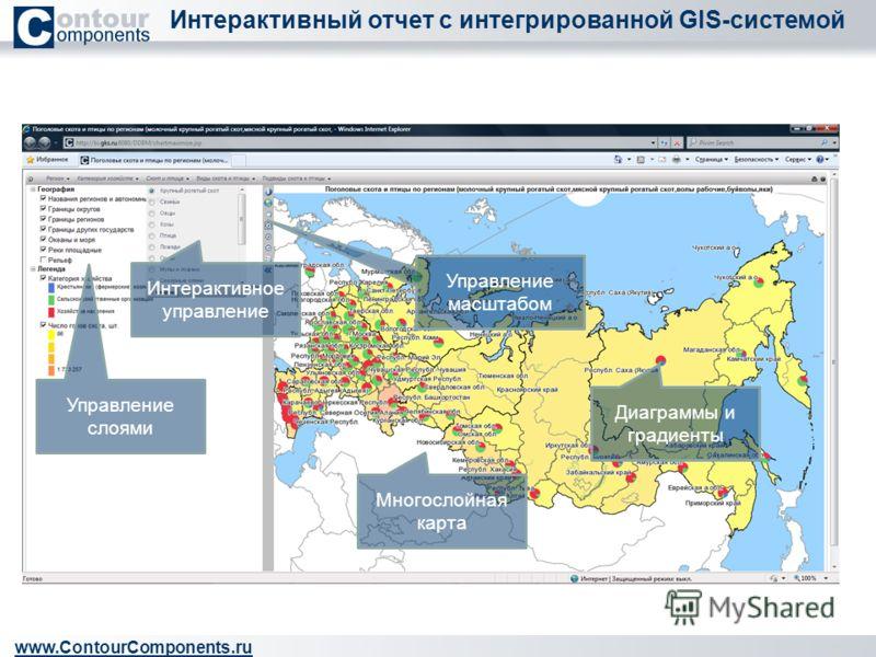 Интерактивный отчет с интегрированной GIS-системой www.ContourComponents.ru Управление слоями Многослойная карта Управление масштабом Интерактивное управление Диаграммы и градиенты