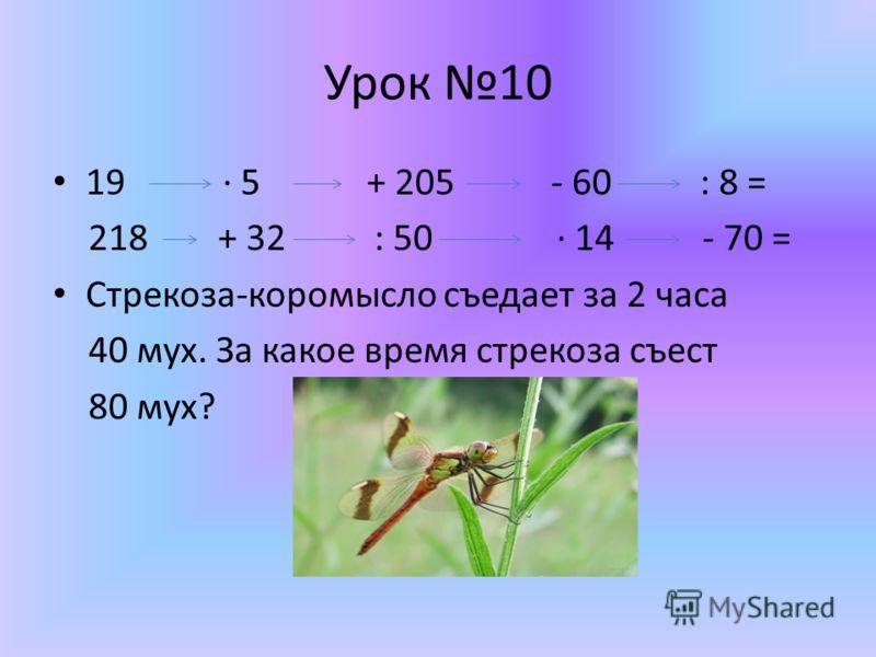 Урок 10 19 5 + 205 - 60 : 8 = 218 + 32 : 50 14 - 70 = Стрекоза-коромысло съедает за 2 часа 40 мух. За какое время стрекоза съест 80 мух?