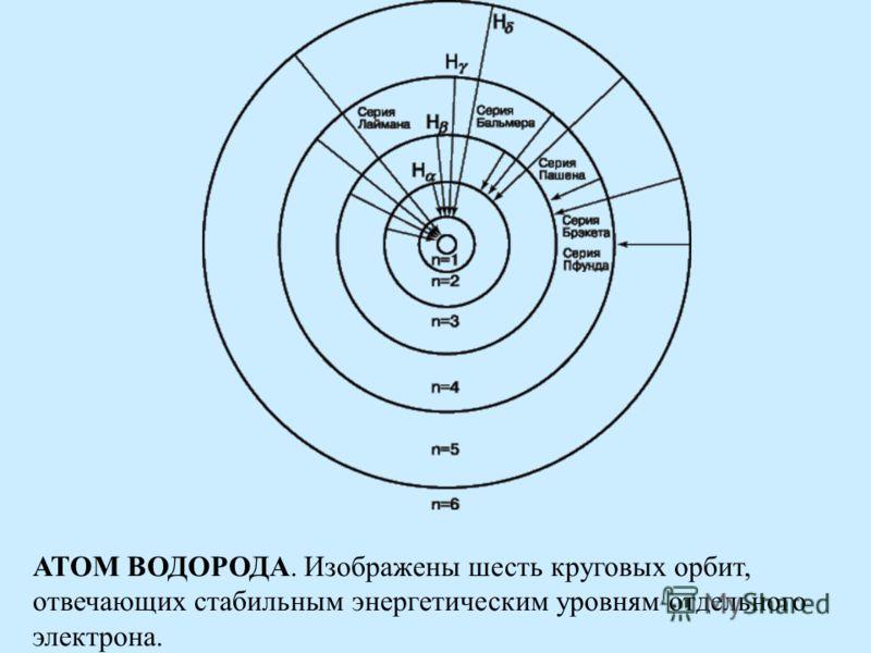 АТОМ ВОДОРОДА. Изображены шесть круговых орбит, отвечающих стабильным энергетическим уровням отдельного электрона.