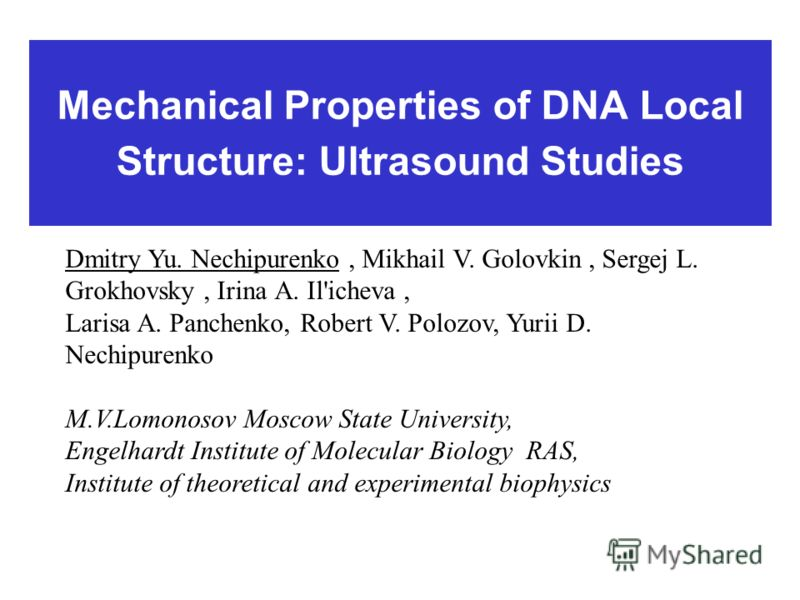 Mechanical Properties of DNA Local Structure: Ultrasound Studies Dmitry Yu. Nechipurenko, Mikhail V. Golovkin, Sergej L. Grokhovsky, Irina А. Il'icheva, Larisa A. Panchenko, Robert V. Polozov, Yurii D. Nechipurenko M.V.Lomonosov Moscow State Universi