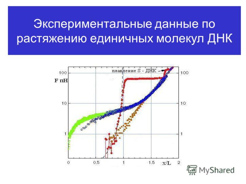 Экспериментальные данные по растяжению единичных молекул ДНК