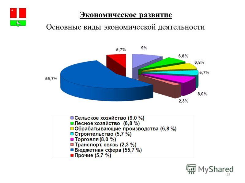45 Экономическое развитие Герб МР(ГО) Основные виды экономической деятельности