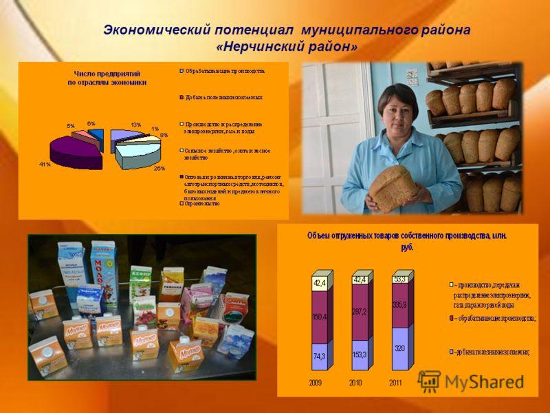 Экономический потенциал муниципального района «Нерчинский район»