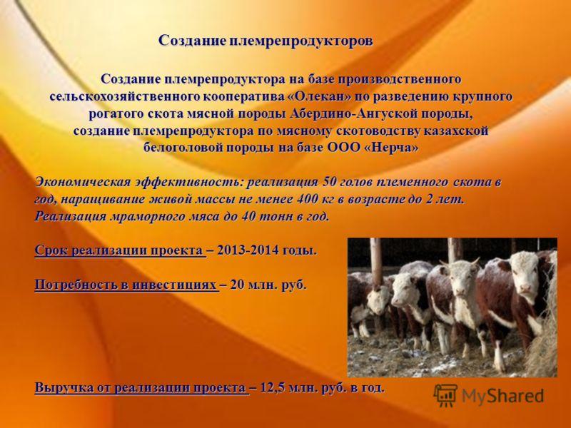 Создание племрепродукторов Создание племрепродуктора на базе производственного сельскохозяйственного кооператива «Олекан» по разведению крупного рогатого скота мясной породы Абердино-Ангуской породы, создание племрепродуктора по мясному скотоводству