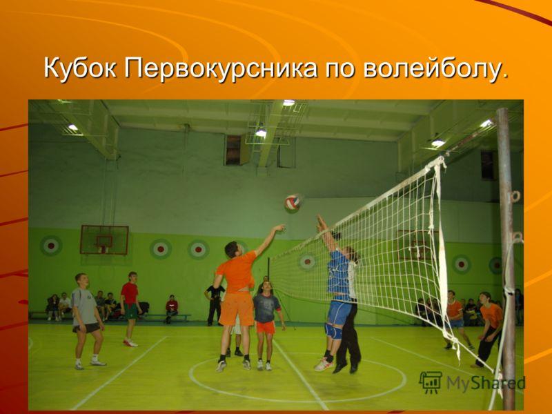 Кубок Первокурсника по волейболу.