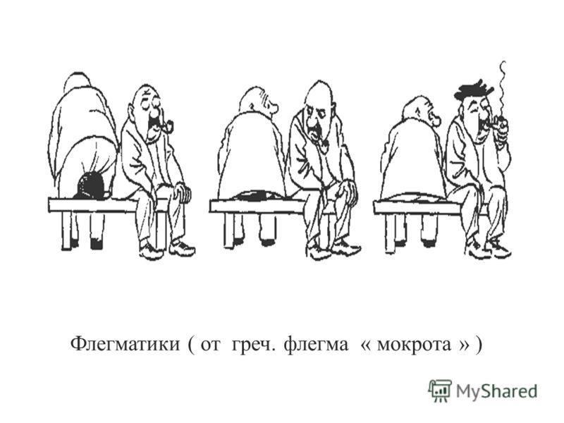 Флегматики ( от греч. флегма « мокрота » )