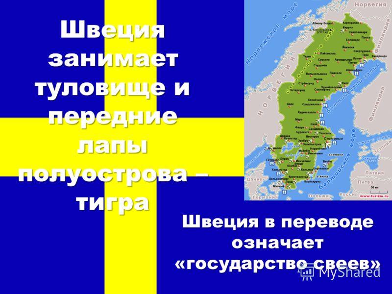 Швеция занимает туловище и передние лапы полуострова – тигра Швеция в переводе означает «государство свеев»