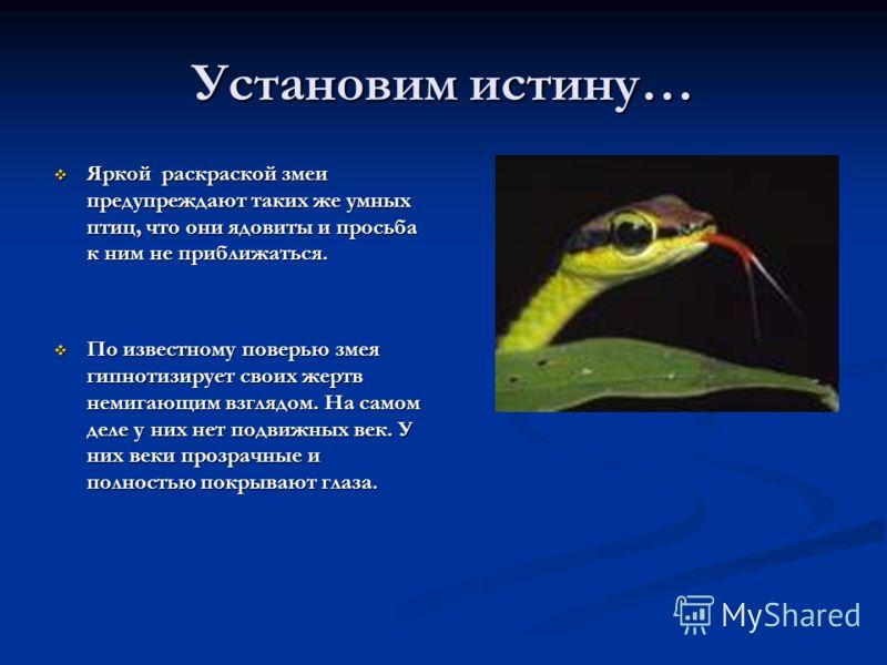 Установим истину… Яркой раскраской змеи предупреждают таких же умных птиц, что они ядовиты и просьба к ним не приближаться. Яркой раскраской змеи предупреждают таких же умных птиц, что они ядовиты и просьба к ним не приближаться. По известному поверь