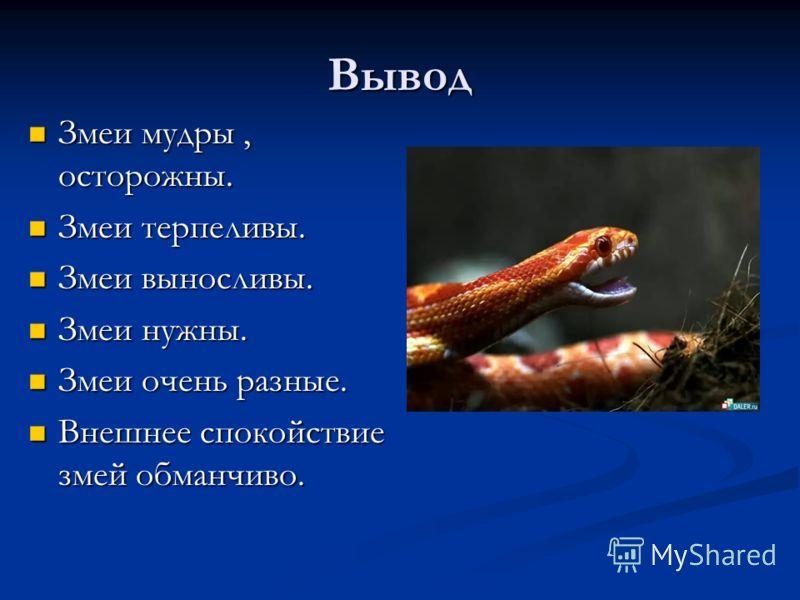 Вывод Змеи мудры, осторожны. Змеи мудры, осторожны. Змеи терпеливы. Змеи терпеливы. Змеи выносливы. Змеи выносливы. Змеи нужны. Змеи нужны. Змеи очень разные. Змеи очень разные. Внешнее спокойствие змей обманчиво. Внешнее спокойствие змей обманчиво.