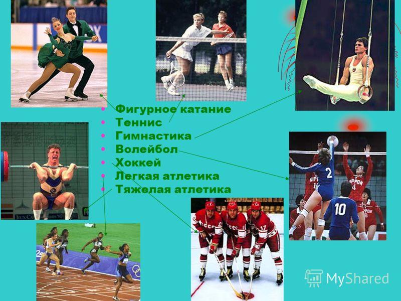 Фигурное катание Теннис Гимнастика Волейбол Хоккей Легкая атлетика Тяжелая атлетика