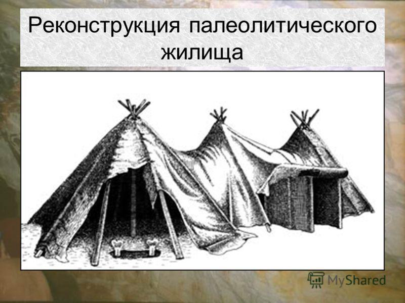 Реконструкция палеолитического жилища