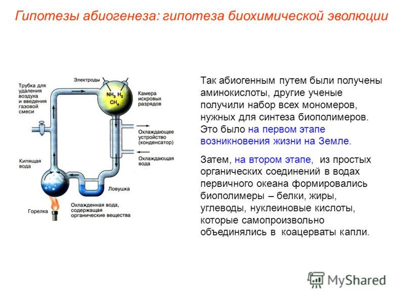 Так абиогенным путем были получены аминокислоты, другие ученые получили набор всех мономеров, нужных для синтеза биополимеров. Это было на первом этапе возникновения жизни на Земле. Затем, на втором этапе, из простых органических соединений в водах п