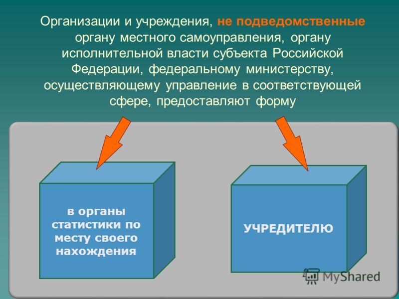Организации и учреждения, не подведомственные органу местного самоуправления, органу исполнительной власти субъекта Российской Федерации, федеральному министерству, осуществляющему управление в соответствующей сфере, предоставляют форму УЧРЕДИТЕЛЮ в