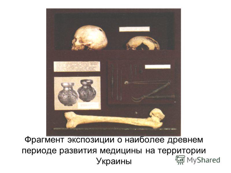 Фрагмент экспозиции о наиболее древнем периоде развития медицины на территории Украины