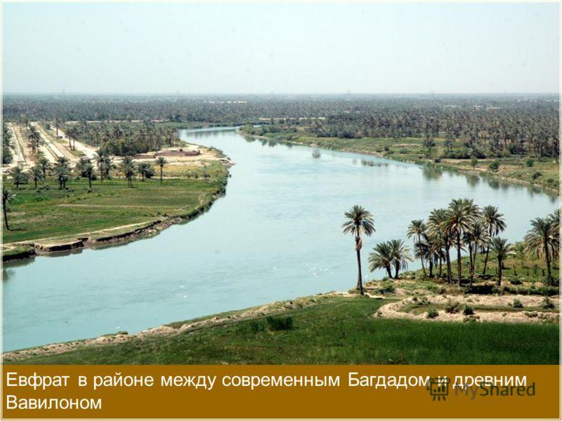 Евфрат в районе между современным Багдадом и древним Вавилоном