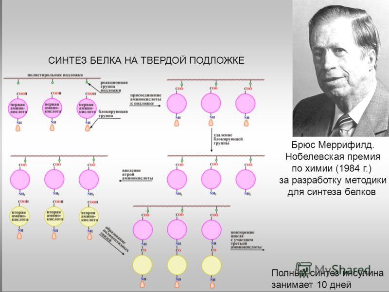 Брюс Меррифилд. Нобелевская премия по химии (1984 г.) за разработку методики для синтеза белков СИНТЕЗ БЕЛКА НА ТВЕРДОЙ ПОДЛОЖКЕ Полный синтез инсулина занимает 10 дней