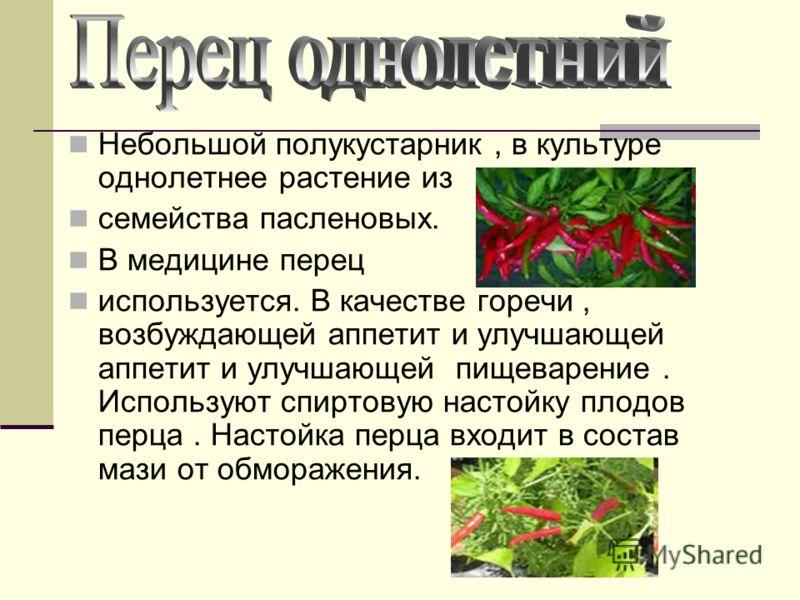 Небольшой полукустарник, в культуре однолетнее растение из семейства пасленовых. В медицине перец используется. В качестве горечи, возбуждающей аппетит и улучшающей аппетит и улучшающей пищеварение. Используют спиртовую настойку плодов перца. Настойк