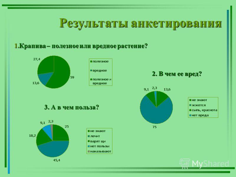 Результаты анкетирования 1.Крапива – полезное или вредное растение? 2. В чем ее вред? 3. А в чем польза?