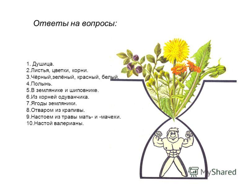 Ответы на вопросы: 1. Душица. 2.Листья, цветки, корни. 3.Чёрный,зелёный, красный, белый. 4.Полынь. 5.В землянике и шиповнике. 6.Из корней одуванчика. 7.Ягоды земляники. 8.Отваром из крапивы. 9.Настоем из травы мать- и -мачехи. 10.Настой валерианы.