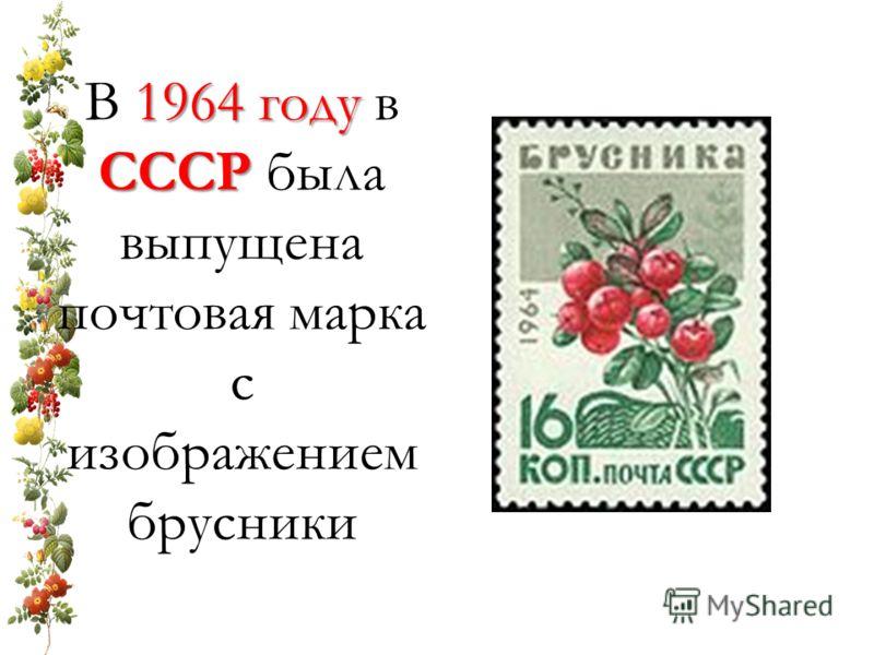 В 1 11 1964 году в СССР была выпущена почтовая марка с изображением брусники