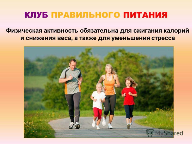 Физическая активность обязательна для сжигания калорий и снижения веса, а также для уменьшения стресса КЛУБ ПРАВИЛЬНОГО ПИТАНИЯ
