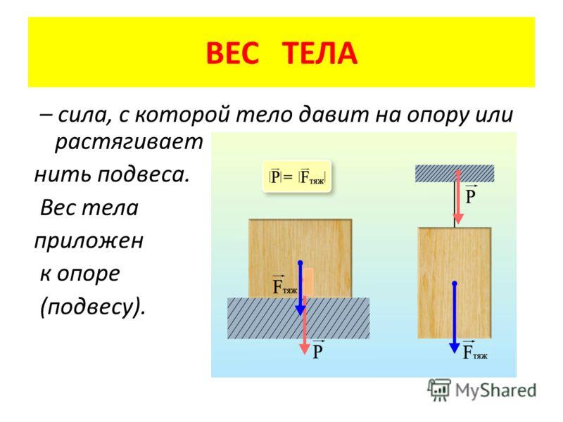 ВЕС ТЕЛА – сила, с которой тело давит на опору или растягивает нить подвеса. Вес тела приложен к опоре (подвесу).
