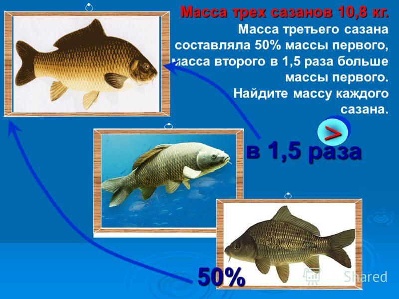 Масса трех сазанов 10,8 кг. Масса трех сазанов 10,8 кг. Масса третьего сазана составляла 50% массы первого, масса второго в 1,5 раза больше массы первого. Найдите массу каждого сазана.>> в 1,5 раза 50%
