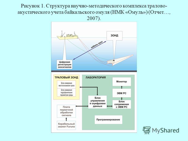 Рисунок 1. Структура научно-методического комплекса тралово- акустического учета байкальского омуля (НМК «Омуль») (Отчет…, 2007).