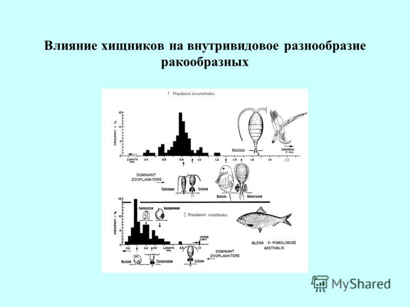 Влияние хищников на внутривидовое разнообразие ракообразных