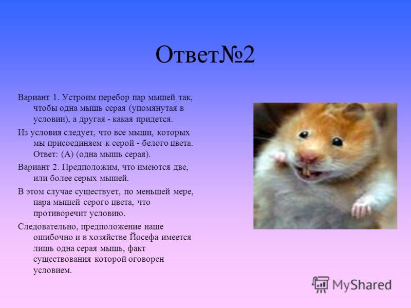 Ответ2 Вариант 1. Устроим перебор пар мышей так, чтобы одна мышь серая (упомянутая в условии), а другая - какая придется. Из условия следует, что все мыши, которых мы присоединяем к серой - белого цвета. Ответ: (А) (одна мышь серая). Вариант 2. Предп