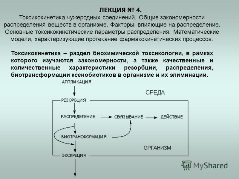 ЛЕКЦИЯ 4. Токсикокинетика чужеродных соединений. Общие закономерности распределения веществ в организме. Факторы, влияющие на распределение. Основные токсикокинетические параметры распределения. Математические модели, характеризующие протекание фарма