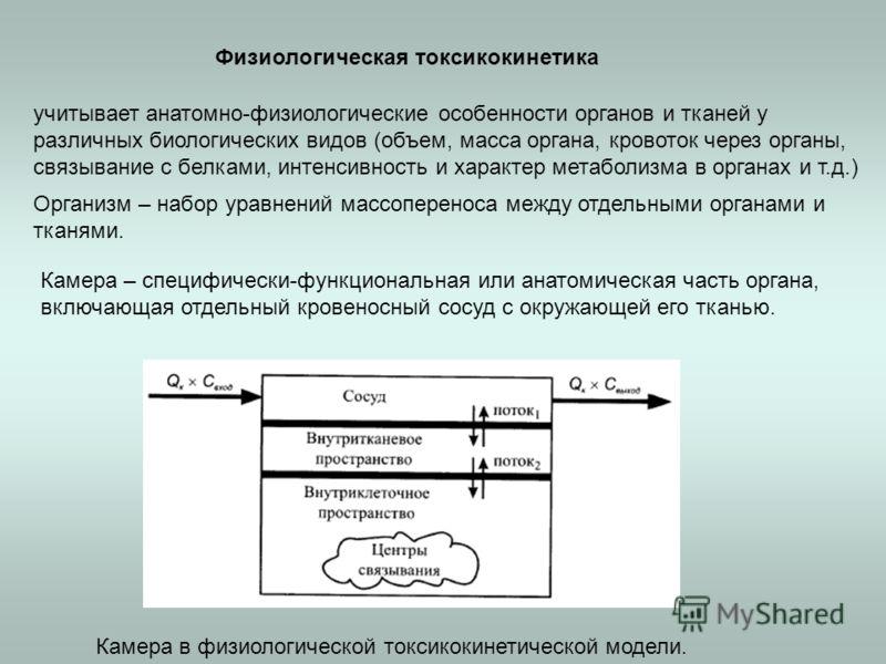 Физиологическая токсикокинетика Организм – набор уравнений массопереноса между отдельными органами и тканями. учитывает анатомно-физиологические особенности органов и тканей у различных биологических видов (объем, масса органа, кровоток через органы,