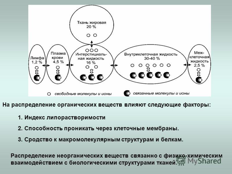 На распределение органических веществ влияют следующие факторы: 1. Индекс липорастворимости 2. Способность проникать через клеточные мембраны. 3. Сродство к макромолекулярным структурам и белкам. Распределение неорганических веществ связанно с физико