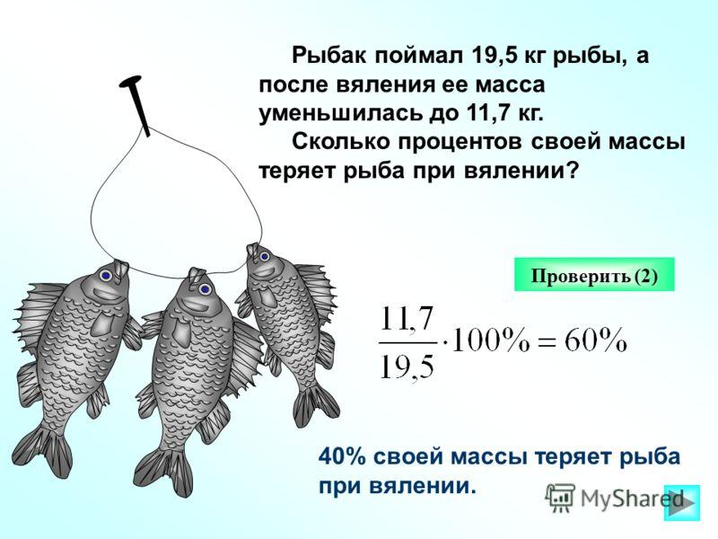 Рыбак поймал 19,5 кг рыбы, а после вяления ее масса уменьшилась до 11,7 кг. Сколько процентов своей массы теряет рыба при вялении? Проверить (2) 40% своей массы теряет рыба при вялении.