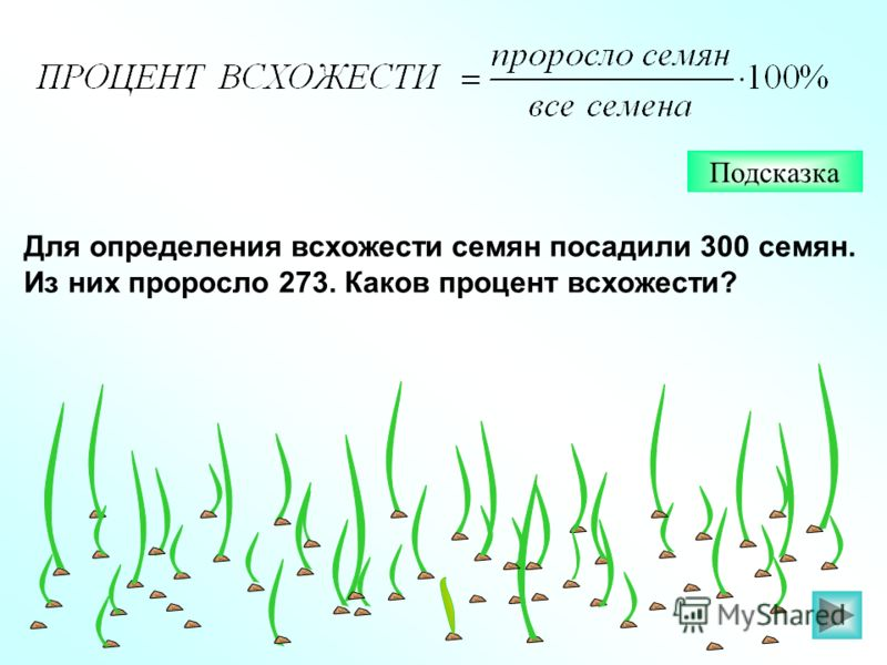 Для определения всхожести семян посадили 300 семян. Из них проросло 273. Каков процент всхожести? Подсказка