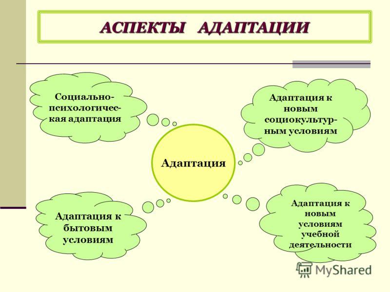 АСПЕКТЫ АДАПТАЦИИ Адаптация Адаптация к бытовым условиям Социально- психологичес- кая адаптация Адаптация к новым условиям учебной деятельности Адаптация к новым социокультур- ным условиям