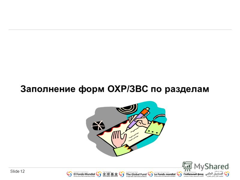 Slide 12 Заполнение форм ОХР/ЗВС по разделам