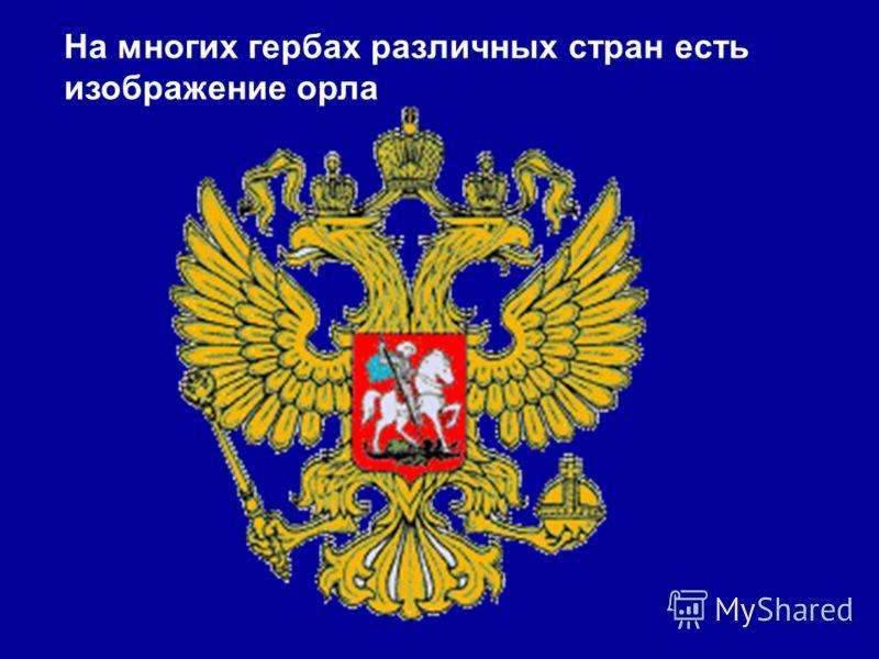 На многих гербах различных стран есть изображение орла